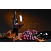 Basic Red Wines 2lt