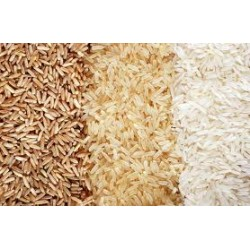 Rice, Grains & Maize